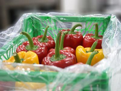 Bell Pepper Fresh Product Packaging
