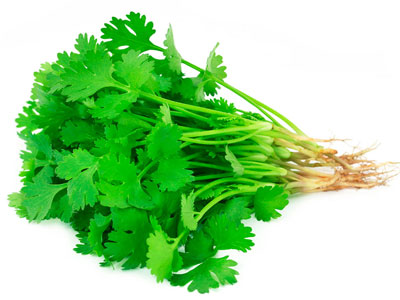 Coriander Fresh Product Packaging