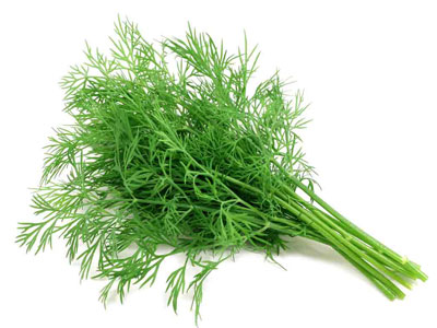 Dill Fresh Product Packaging
