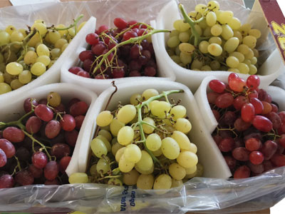 Grapes Fresh Product Packaging