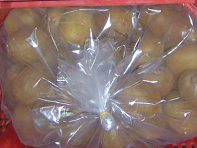 Kiwi Fresh Product Packaging