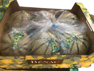 Melons Fresh Product Packaging